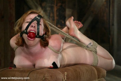 Photo number 14 from Adrianna Nicole shot for Wired Pussy on Kink.com. Featuring Adrianna Nicole in hardcore BDSM & Fetish porn.