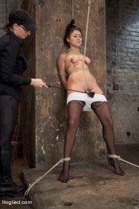 Photo number 3 from Scarlet Banks Cums to HogTied shot for Hogtied on Kink.com. Featuring Scarlet Banks in hardcore BDSM & Fetish porn.
