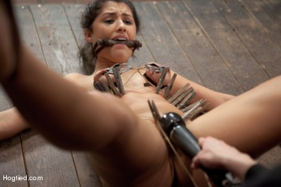 Photo number 5 from Scarlet Banks Cums to HogTied shot for Hogtied on Kink.com. Featuring Scarlet Banks in hardcore BDSM & Fetish porn.