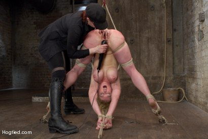 Photo number 14 from Darling - Complete Edited Live Show shot for Hogtied on Kink.com. Featuring Dee Williams in hardcore BDSM & Fetish porn.