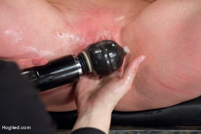 Photo number 2 from Darling - Complete Edited Live Show shot for Hogtied on Kink.com. Featuring Dee Williams in hardcore BDSM & Fetish porn.