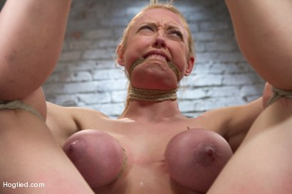 Photo number 3 from Darling - Complete Edited Live Show shot for Hogtied on Kink.com. Featuring Dee Williams in hardcore BDSM & Fetish porn.