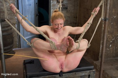 Photo number 5 from Darling - Complete Edited Live Show shot for Hogtied on Kink.com. Featuring Dee Williams in hardcore BDSM & Fetish porn.