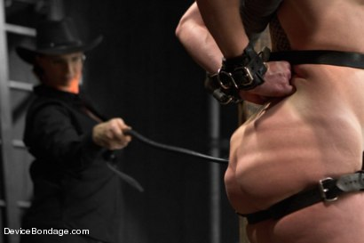 Photo number 7 from Cockateel Returns shot for Device Bondage on Kink.com. Featuring Dee Williams in hardcore BDSM & Fetish porn.