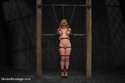 Photo number 5 from Cockateel Returns shot for Device Bondage on Kink.com. Featuring Dee Williams in hardcore BDSM & Fetish porn.