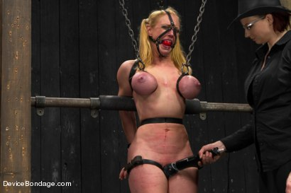Photo number 8 from Cockateel Returns shot for Device Bondage on Kink.com. Featuring Dee Williams in hardcore BDSM & Fetish porn.