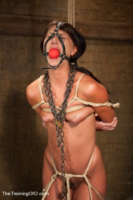 Photo number 4 from THe Training of Cassandra Nix, Day Two shot for The Training Of O on Kink.com. Featuring Owen Gray and Cassandra Nix in hardcore BDSM & Fetish porn.