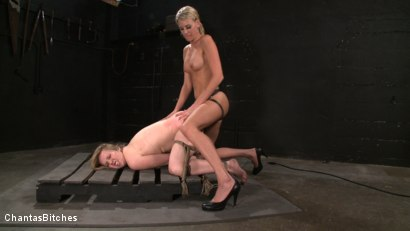 Photo number 14 from Pink Skin shot for Chantas Bitches on Kink.com. Featuring Audrey Leigh and Addison Heart in hardcore BDSM & Fetish porn.