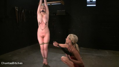Photo number 4 from Pink Skin shot for Chantas Bitches on Kink.com. Featuring Audrey Leigh and Addison Heart in hardcore BDSM & Fetish porn.
