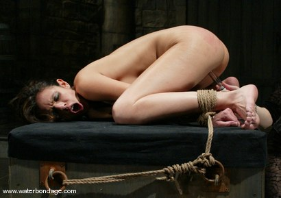 Photo number 8 from shy love shot for Water Bondage on Kink.com. Featuring shy love in hardcore BDSM & Fetish porn.