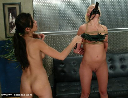 Photo number 10 from Staci Thorn and shy love shot for Whipped Ass on Kink.com. Featuring shy love and Staci Thorn in hardcore BDSM & Fetish porn.