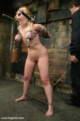Photo number 13 from Darling shot for Hogtied on Kink.com. Featuring Dee Williams in hardcore BDSM & Fetish porn.