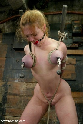 Photo number 14 from Darling shot for Hogtied on Kink.com. Featuring Dee Williams in hardcore BDSM & Fetish porn.