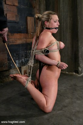 Photo number 11 from Harmony shot for Hogtied on Kink.com. Featuring Harmony in hardcore BDSM & Fetish porn.