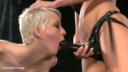 Photo number 8 from Aiming to Please shot for Chantas Bitches on Kink.com. Featuring Audrey Leigh and Cherry Torn in hardcore BDSM & Fetish porn.