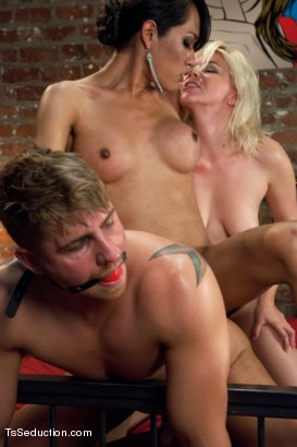 Photo number 8 from Who's Afraid of Jessica Fox? The Evil Neighbour Sequel Threesome shot for TS Seduction on Kink.com. Featuring Logan Vaughn, Alice Frost and Jessica Fox in hardcore BDSM & Fetish porn.