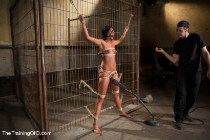 Photo number 1 from The Training of Cassandra Nix, Day Four shot for The Training Of O on Kink.com. Featuring Cassandra Nix and Owen Gray in hardcore BDSM & Fetish porn.