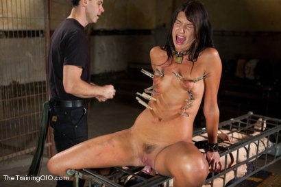 Photo number 5 from The Training of Cassandra Nix, Day Four shot for The Training Of O on Kink.com. Featuring Cassandra Nix and Owen Gray in hardcore BDSM & Fetish porn.