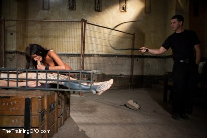 Photo number 6 from The Training of Cassandra Nix, Day Four shot for The Training Of O on Kink.com. Featuring Cassandra Nix and Owen Gray in hardcore BDSM & Fetish porn.