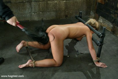 Photo number 11 from Hollie Stevens shot for Hogtied on Kink.com. Featuring Hollie Stevens in hardcore BDSM & Fetish porn.