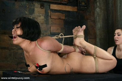Photo number 12 from DragonLily shot for Wired Pussy on Kink.com. Featuring DragonLily in hardcore BDSM & Fetish porn.