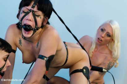 Photo number 11 from Porcelain Electro Dolls shot for Electro Sluts on Kink.com. Featuring Chanel Preston, Lorelei Lee, Asphyxia Noir and Katharine Cane in hardcore BDSM & Fetish porn.