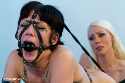 Photo number 12 from Porcelain Electro Dolls shot for Electro Sluts on Kink.com. Featuring Chanel Preston, Lorelei Lee, Asphyxia Noir and Katharine Cane in hardcore BDSM & Fetish porn.