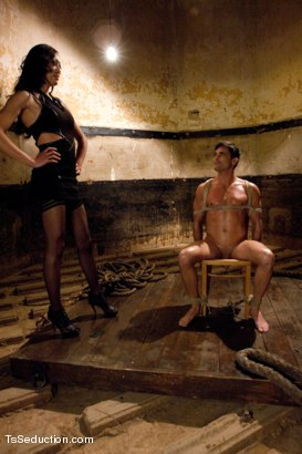 Photo number 1 from Ball Torture and Real BTS fucking with a Classic Ts Seduction Set-up shot for TS Seduction on Kink.com. Featuring Lance Hart and Venus Lux in hardcore BDSM & Fetish porn.