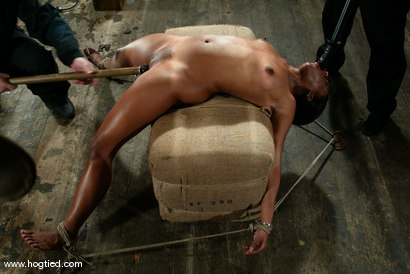 Photo number 10 from Sydnee Capri shot for Hogtied on Kink.com. Featuring Sydnee Capri in hardcore BDSM & Fetish porn.