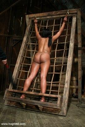 Photo number 13 from Sydnee Capri shot for Hogtied on Kink.com. Featuring Sydnee Capri in hardcore BDSM & Fetish porn.