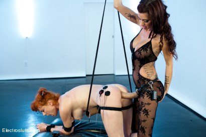 Photo number 7 from Ass Fucked and Shocked! shot for Electro Sluts on Kink.com. Featuring Gia DiMarco and Audrey Hollander in hardcore BDSM & Fetish porn.