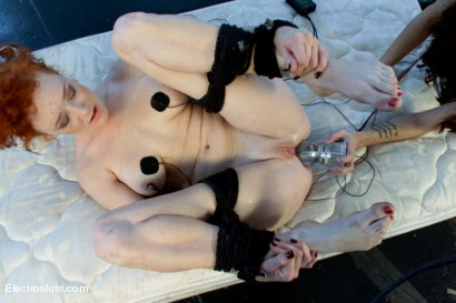 Photo number 10 from Audrey Hollander, the Queen of Anal VS Stanley shot for Electro Sluts on Kink.com. Featuring Gia DiMarco and Audrey Hollander in hardcore BDSM & Fetish porn.