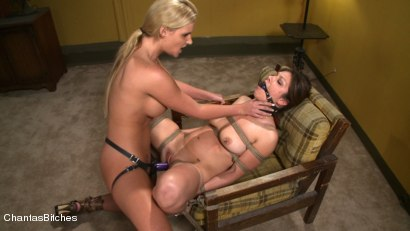 Photo number 8 from Fucking Piece of Meat shot for Chantas Bitches on Kink.com. Featuring Karrlie Dawn and Phoenix Marie in hardcore BDSM & Fetish porn.