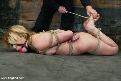 Photo number 8 from Gia Paloma shot for Hogtied on Kink.com. Featuring Gia Paloma in hardcore BDSM & Fetish porn.