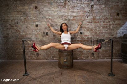 Photo number 2 from Bitch Bound In Bag & Extreme Spread Eagle Special! shot for Hogtied on Kink.com. Featuring Tia Ling in hardcore BDSM & Fetish porn.