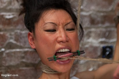Photo number 1 from Bitch Bound In Bag & Extreme Spread Eagle Special! shot for Hogtied on Kink.com. Featuring Tia Ling in hardcore BDSM & Fetish porn.