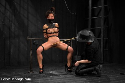Photo number 6 from Tia Ling - Tormented WHORE shot for Device Bondage on Kink.com. Featuring Tia Ling in hardcore BDSM & Fetish porn.