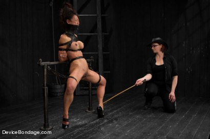 Photo number 8 from Tia Ling - Tormented WHORE shot for Device Bondage on Kink.com. Featuring Tia Ling in hardcore BDSM & Fetish porn.
