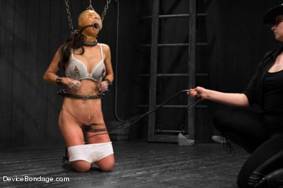 Photo number 3 from Tia Ling - Tormented WHORE shot for Device Bondage on Kink.com. Featuring Tia Ling in hardcore BDSM & Fetish porn.