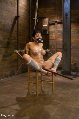 Photo number 5 from Beretta - Challenged with Wanton Cruelty shot for Hogtied on Kink.com. Featuring Beretta James in hardcore BDSM & Fetish porn.