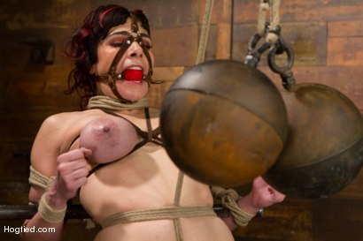Photo number 8 from Annika - Complete Edited Live Show shot for Hogtied on Kink.com. Featuring Annika in hardcore BDSM & Fetish porn.