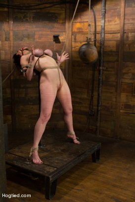 Photo number 10 from Annika - Complete Edited Live Show shot for Hogtied on Kink.com. Featuring Annika in hardcore BDSM & Fetish porn.