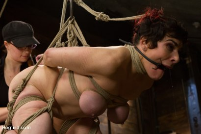 Photo number 15 from Annika - Complete Edited Live Show shot for Hogtied on Kink.com. Featuring Annika in hardcore BDSM & Fetish porn.