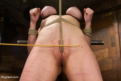 Photo number 7 from Annika - Complete Edited Live Show shot for Hogtied on Kink.com. Featuring Annika in hardcore BDSM & Fetish porn.