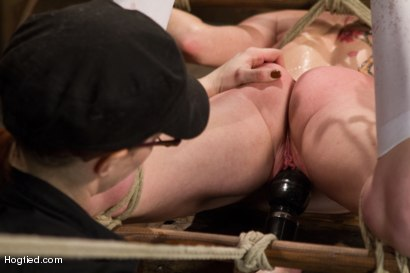 Photo number 8 from Audrey Hollander - Bitch Still Has It shot for Hogtied on Kink.com. Featuring Audrey Hollander in hardcore BDSM & Fetish porn.
