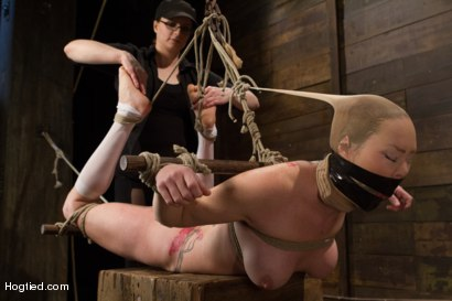 Photo number 10 from Audrey Hollander - Bitch Still Has It shot for Hogtied on Kink.com. Featuring Audrey Hollander in hardcore BDSM & Fetish porn.