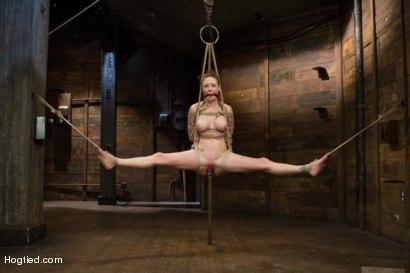 Photo number 12 from Audrey Hollander - Bitch Still Has It shot for Hogtied on Kink.com. Featuring Audrey Hollander in hardcore BDSM & Fetish porn.