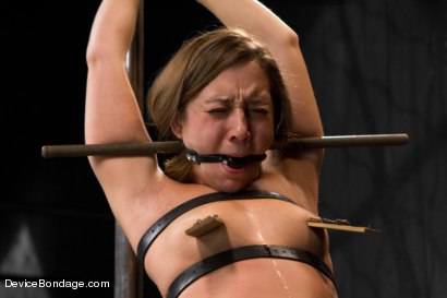 Photo number 4 from Girl Next Door & AVN Award Winner Remy LaCroix Returns shot for Device Bondage on Kink.com. Featuring Remy LaCroix in hardcore BDSM & Fetish porn.