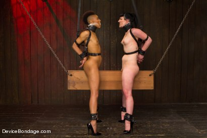 Photo number 4 from Nikki Darling & Katharine Cane - Complete Edited Live Show shot for Device Bondage on Kink.com. Featuring Mz Berlin, Nikki Darling and Katharine Cane in hardcore BDSM & Fetish porn.