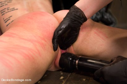 Photo number 7 from Nikki Darling & Katharine Cane - Complete Edited Live Show shot for Device Bondage on Kink.com. Featuring Mz Berlin, Nikki Darling and Katharine Cane in hardcore BDSM & Fetish porn.